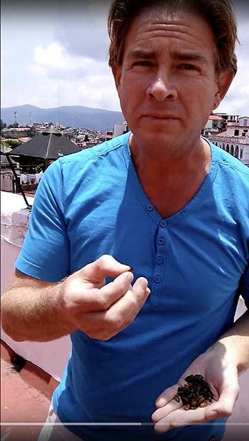 Hypnotherapist Todd Gray eating Jumiles in Taxco, Mexico