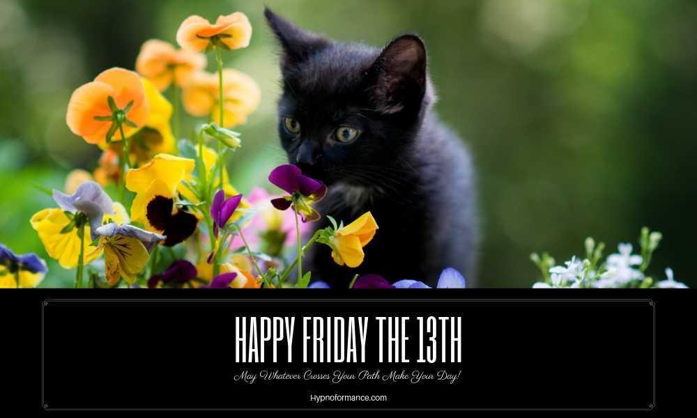Friday 13th Black Cat